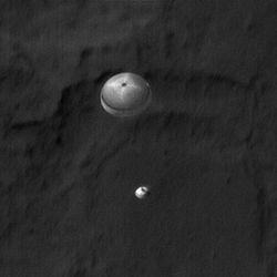 Curiosity chute small