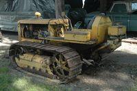 Cat D-2jpg