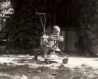 Jim stroller cropped