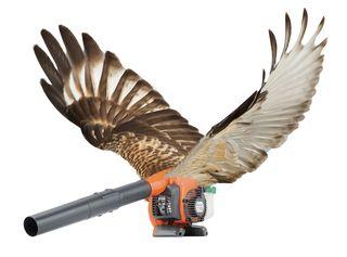 Leaf blower drone cropped