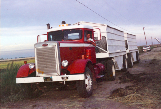 Bob peterbilt trailers